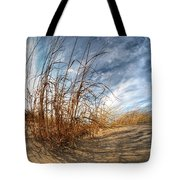 0011 Presque Isle State Park Series Tote Bag