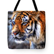 0013 Siberian Tiger Tote Bag