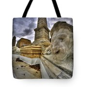 0016 Lions At The Square Tote Bag
