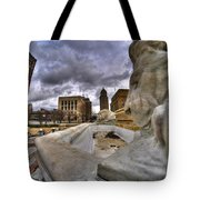 0017 Lions At The Square  Tote Bag