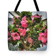 002 Bonsai Summer Show Buffalo Botanical Gardens Series Tote Bag