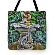 002 Fountain Buffalo Botanical Gardens Series Tote Bag