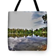 002 Reflecting At Forest Lawn Tote Bag