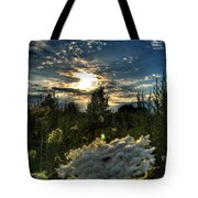 003 Life Is Beautiful Tote Bag