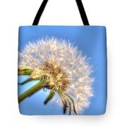 003 Make A Wish Tote Bag