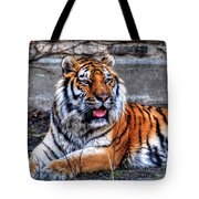 003 Siberian Tiger Tote Bag