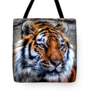 004 Siberian Tiger Tote Bag