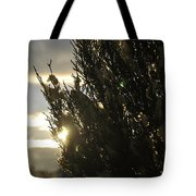 005 Peaking Winter Sunrise Tote Bag
