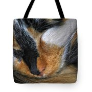 0053 Sleeping Cleo Tote Bag