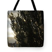 006 Peaking Winter Sunrise Tote Bag