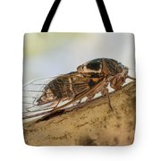 01 New Forest Cicada  Tote Bag