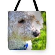 01 Portriat Of Wizard   Pet Series Tote Bag