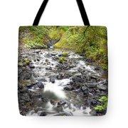 0106 Columbia River Gorge Near Bridal Veil Falls Tote Bag