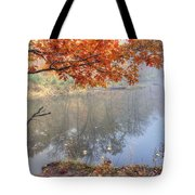0132 Autumn At Starved Rock Tote Bag