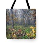 0133 Misty Meadow 2 Tote Bag