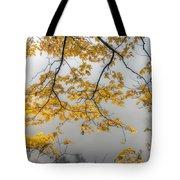 0135 Autumn Gold  Tote Bag
