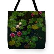 0151-lily -   Expressionist Plein Air Sl Tote Bag