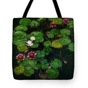0151-lily - Color Drawing Sl Tote Bag