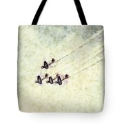 0161 - Air Show - Colored Photo 2 Hp Tote Bag