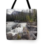 0182 Natural Bridge Waterfall Tote Bag