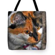 02 Cleo Tote Bag
