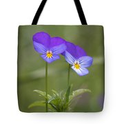 02 Heart's Ease Wild Viola Tote Bag