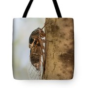 02 New Forest Cicada  Tote Bag