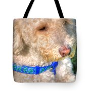 02 Portriat Of Wizard   Pet Series Tote Bag