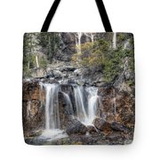 0202 Tangle Creek Falls 5 Tote Bag