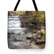 0278 South Elgin Waterfall Tote Bag