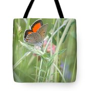03 Balkan Copper Butterfly Tote Bag