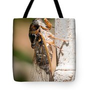 03 New Forest Cicada  Tote Bag