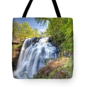 0302 Cuyahoga Valley National Park Brandywine Falls Tote Bag