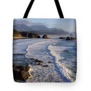 0319 Indian Beach Tote Bag