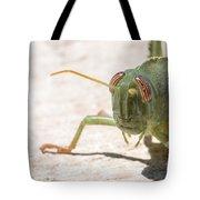 04 Egyptian Locust Grasshopper Tote Bag