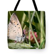 05 Balkan Copper Butterfly Tote Bag