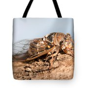 05 New Forest Cicada  Tote Bag