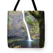 0508 Horsetail Falls Tote Bag