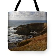 0513  Yaquina Lighthouse Tote Bag
