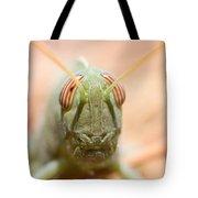 06 Egyptian Locust Grasshopper Tote Bag