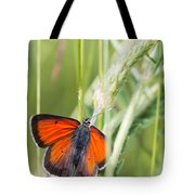 07 Balkan Copper Butterfly Tote Bag
