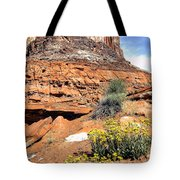 0712 Guardian Of Canyonland Tote Bag