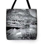 0715 Guardian Of Canyonland Tote Bag