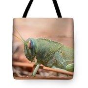 08 Egyptian Locust Grasshopper Tote Bag