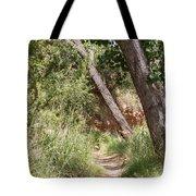 08.03.14 Palo Duro Canyon Rojo Grande Trail 8e Tote Bag