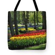 090416p038 Tote Bag
