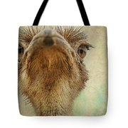 Ostrich Closeup Tote Bag