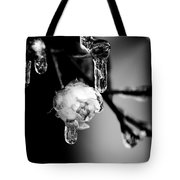 Rose And Frozen Leafs In Cold Winter Tones Tote Bag