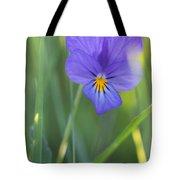 01 Heart's Ease Wild Viola Tote Bag