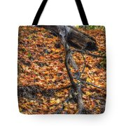 Woods Scene Tote Bag